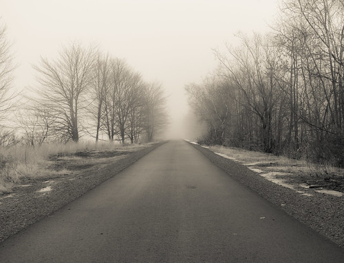 railtrail trees blackandwhite fog winter leadinglines canong15 nature landscape