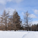 Laurier Park to Hawrelak Park