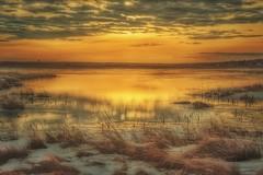 Sunrise - On Golden Pond