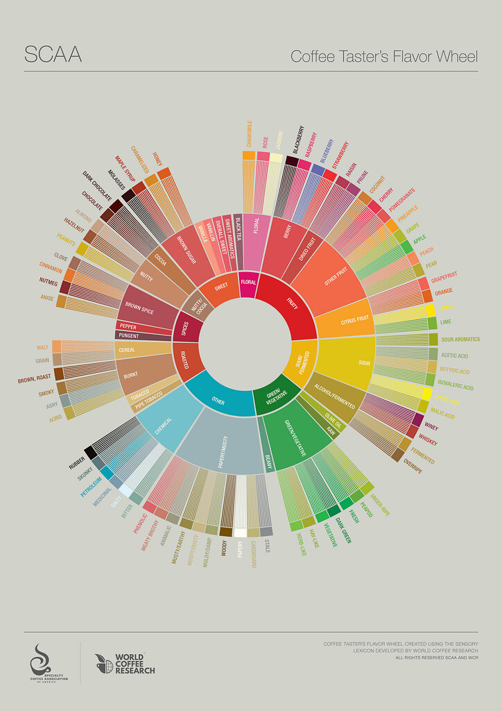 SCAA_Flavor Wheel Prime Coffee