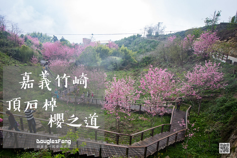 【遊記】嘉義竹崎頂石棹櫻之道 (1)