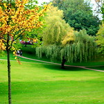 Green Winckley Square Preston