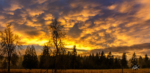 2017 tenino churchillproperty churchill sky pnw horse sunset clouds washington unitedstates us
