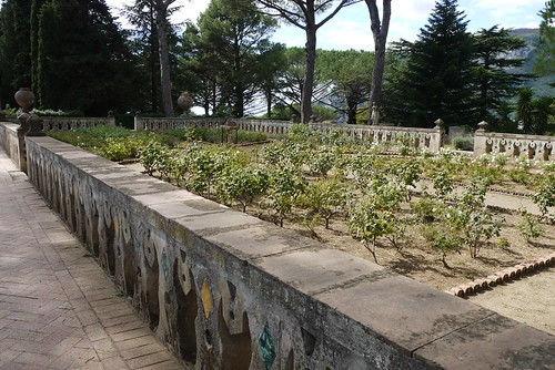 The Rose Terrace