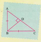 ncert-class-10-maths-lab-manual-pythagoras-theorem-8