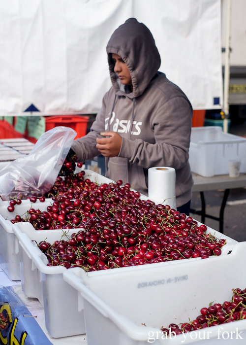 Cherries from Drive-In Orchards in Young at Southside Farmers Market in Canberra
