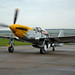 North American P-51D Mustang - G-BTCD / 413704 / 'Ferocious Frankie' (1944)