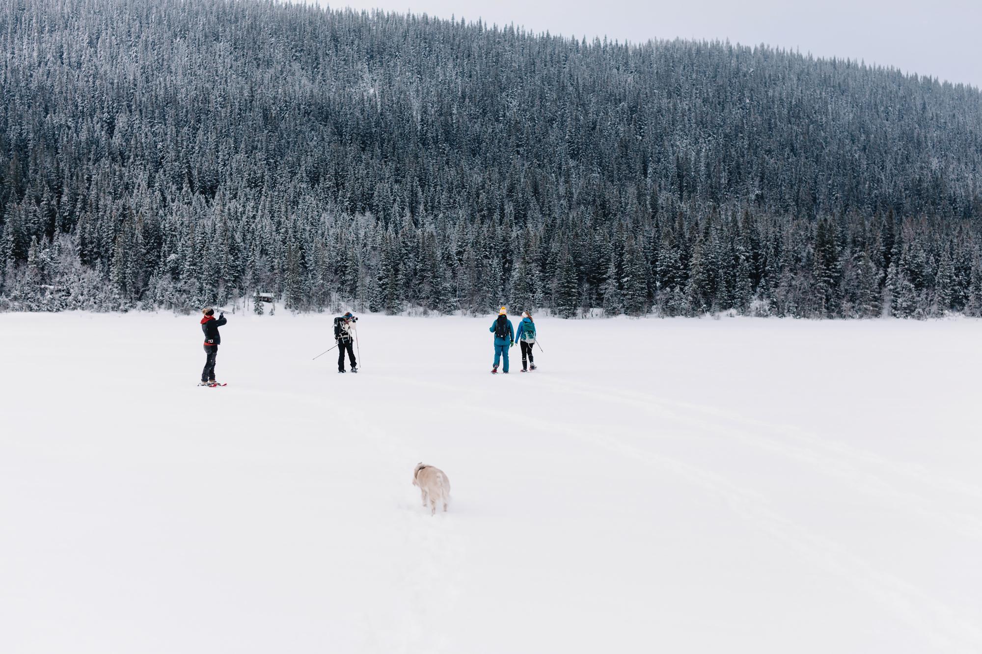 Snöskovandring i Åre
