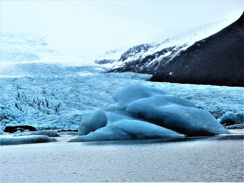 le-glacier-fjallsarlon-iceberg-lagoon-islande-thecityandbeauty.wordpress.com- blog-voyage-IMG_7432 (4)