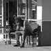 homeless in america by alan guido
