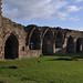 Croxden, Staffordshire, abbey ruins, detail