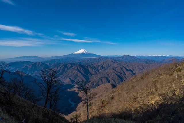 富士山と南アルプス@熊笹ノ峰手前