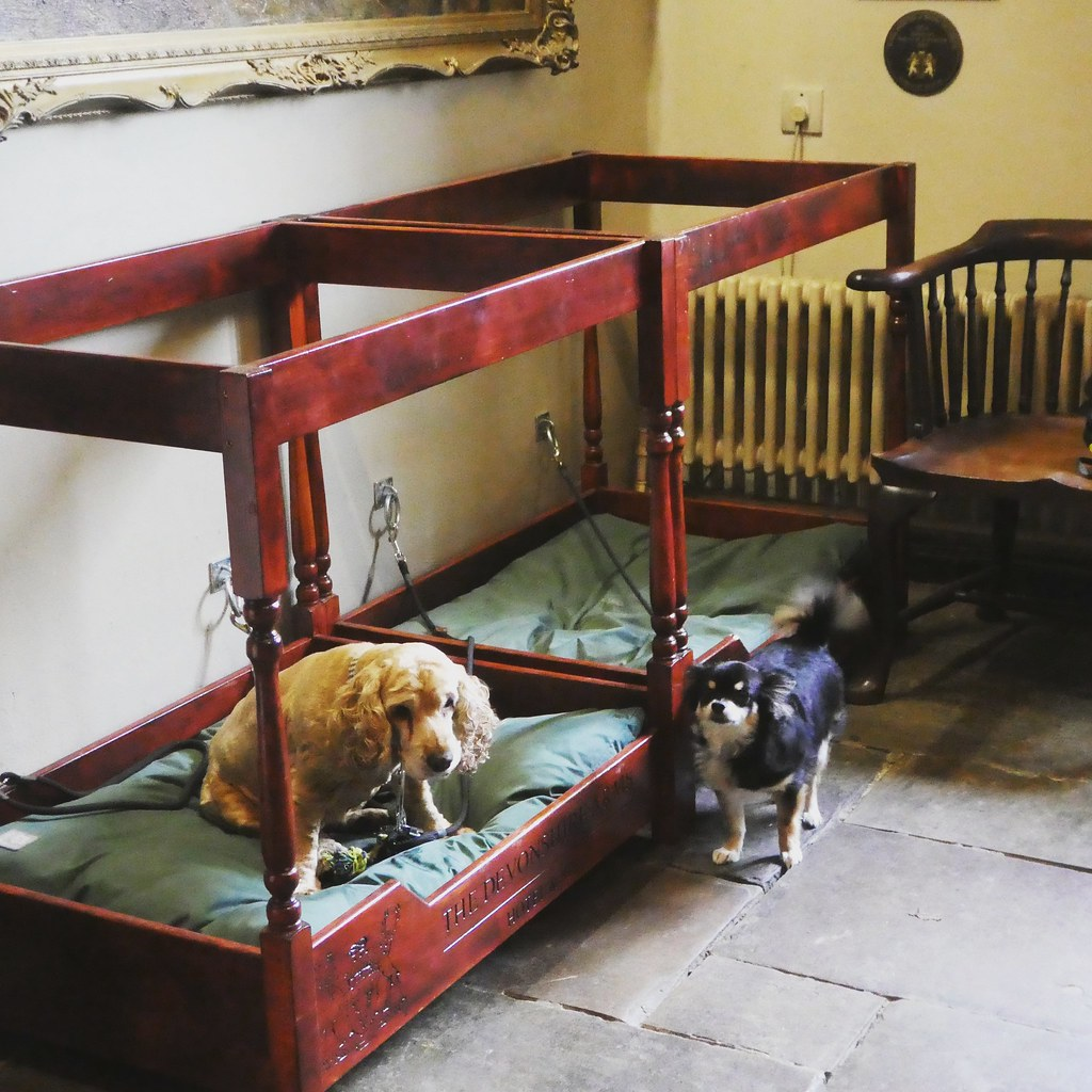 Pets are welcome, Devonshire Arms Hotel and Spa, Bolton Abbey