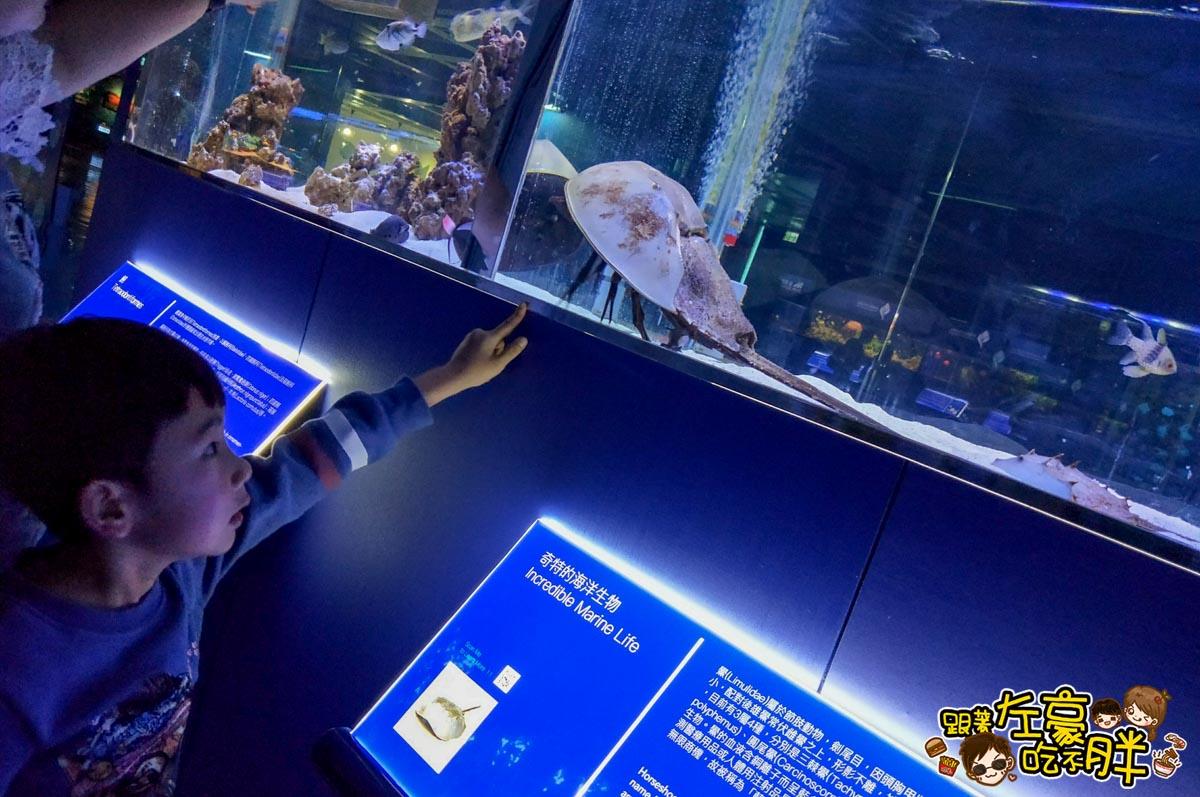 屏東生技園區國際級水族展示廳-23