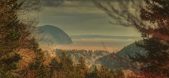 Dickson Falls Trailhead Lookout - Fundy National Park, New Brunswick