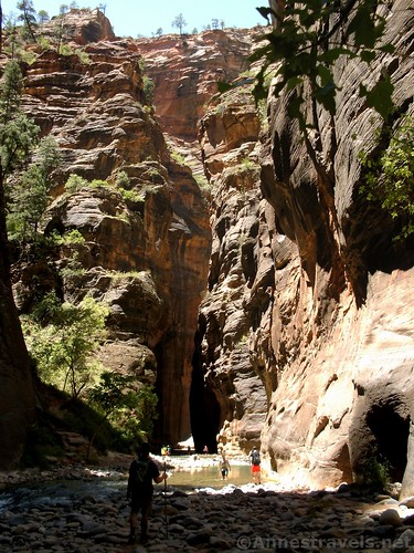 Into the Narrows in Zion National Park, utah