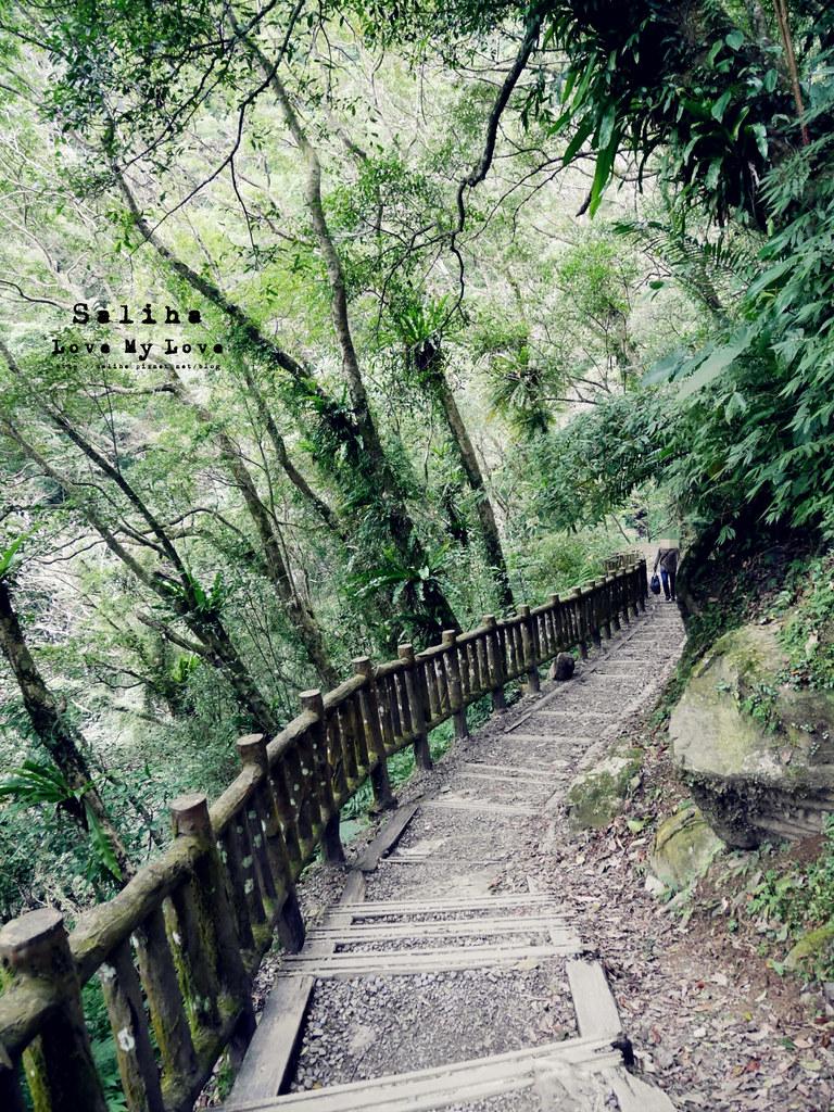 新北三峽一日遊踏青景點推薦滿月圓森林遊樂區 (31)