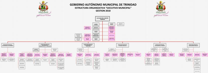 Organigrama Ejecutivo Municipal