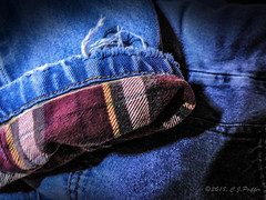 Clothing, fabric, cloth