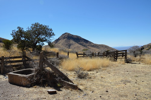 Las Cruces - Organ Peaks Livery