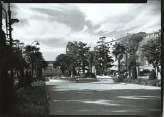 FR17 Montréal, Aude, Languedoc, France (Korona View 5x7 large format)