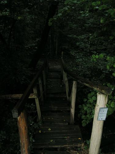 20070829 11432 0705 Jakobus Brücke Loch