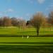 Hurtmore Golf Course-E2010094