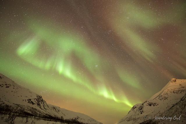 Northern Lights 13th January