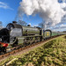 The Bluebell Railway in the February Sun