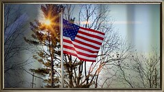Day 44 of 365--A US Flag Blowin' in the Wind--Cellphone Project 2018