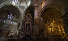 Cathédrale Notre-Dame-de-la-Sède de Tarbes