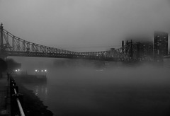 Queensboro Bridge in January fog and mist-7060