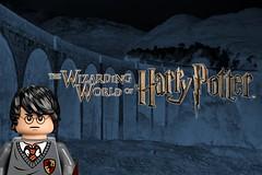 LEGO Harry Potter 2018 Wizarding World Sets