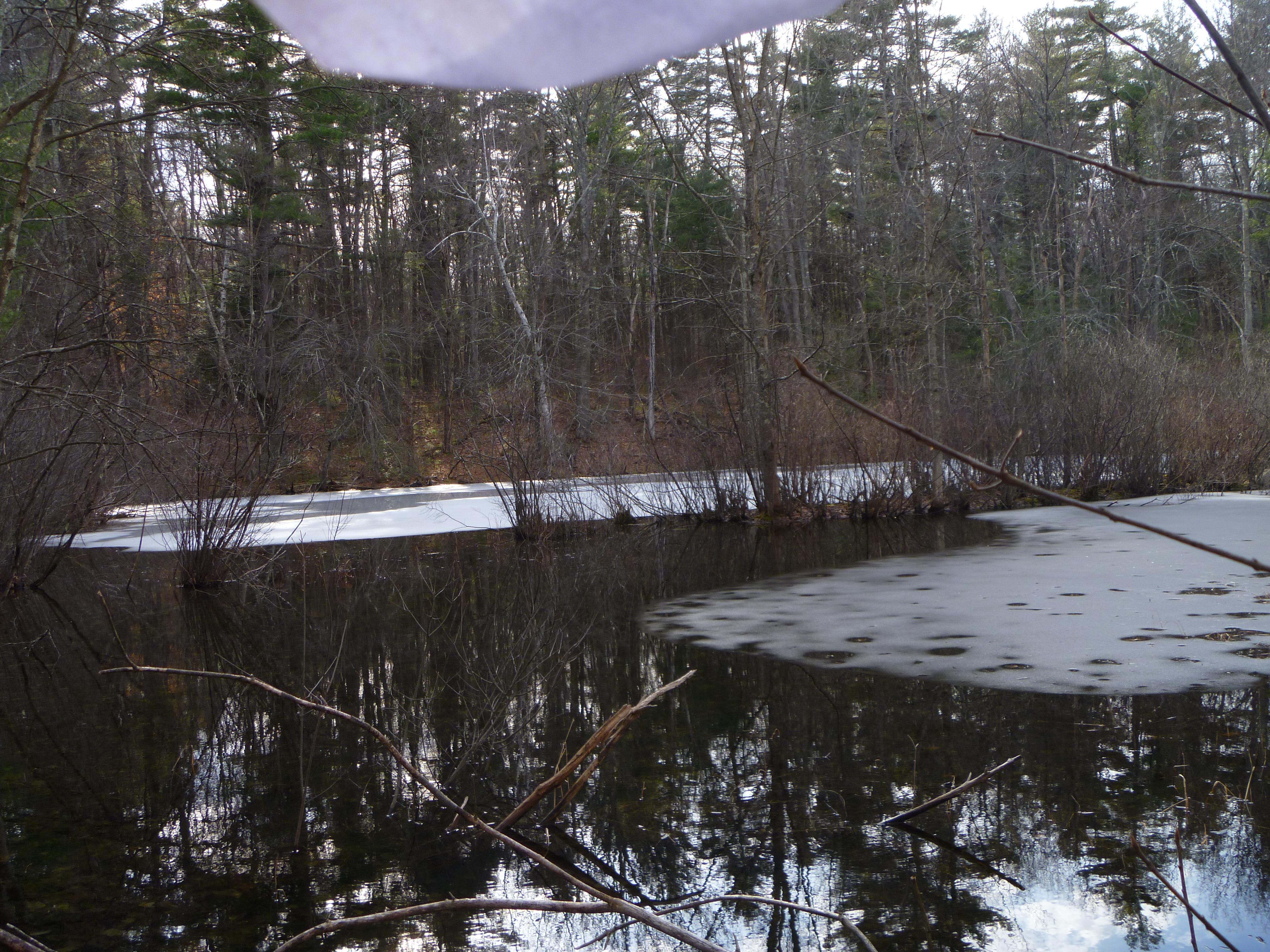 Exploring Massachusetts: February 2018