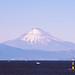 富士山 ー 荒崎公園にて