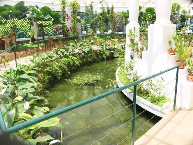 jardim botanico 5 atractii turistice rio de janeiro