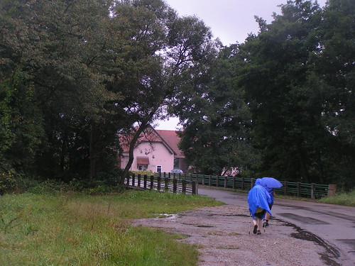 20070829 11298 0705 Jakobus Regen Bäume Straße Brücke ElisabethB Margarete