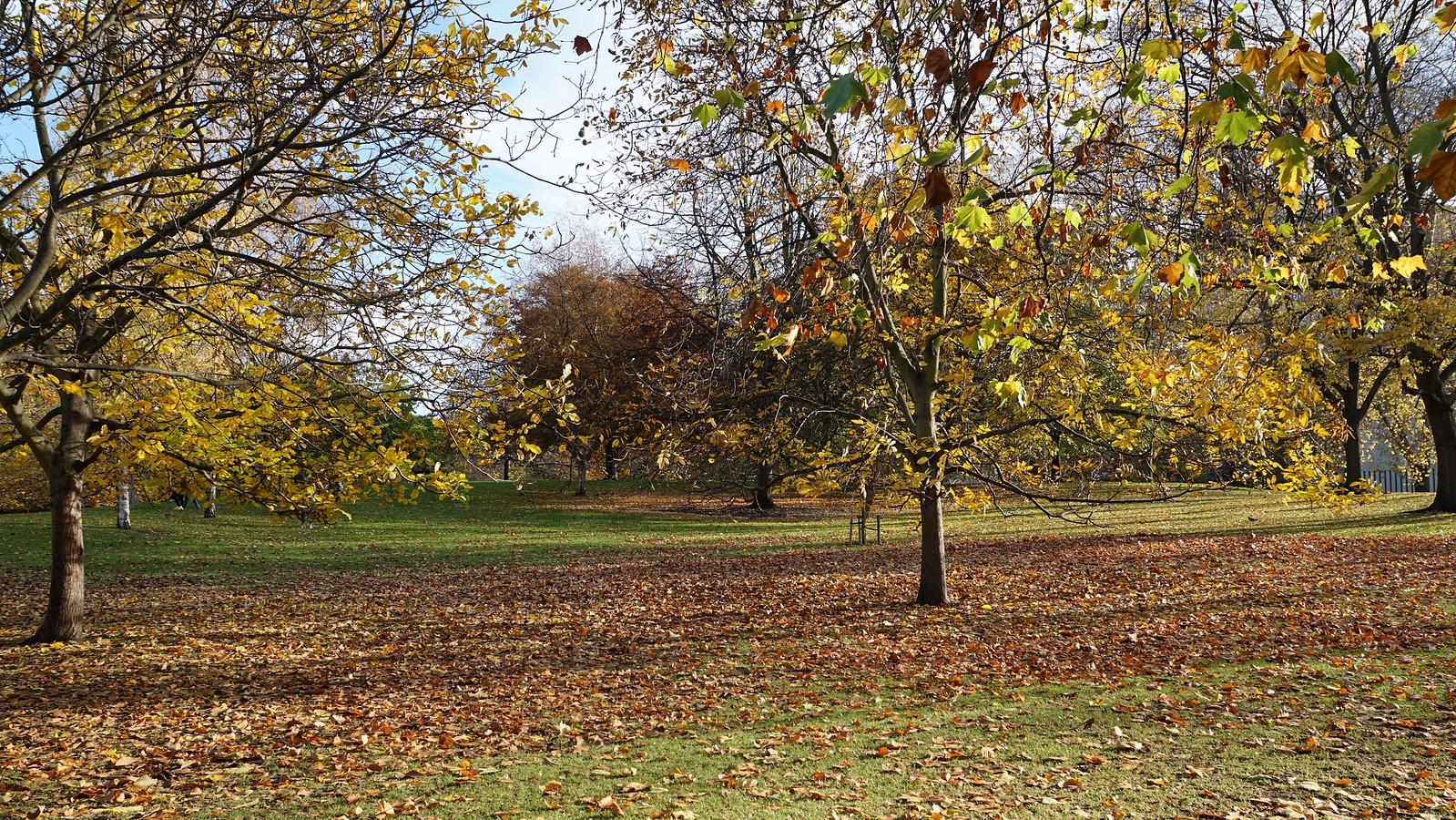 Londres por partes (I) en Nuestros reportajes40104530922_7b124ddcb2_h