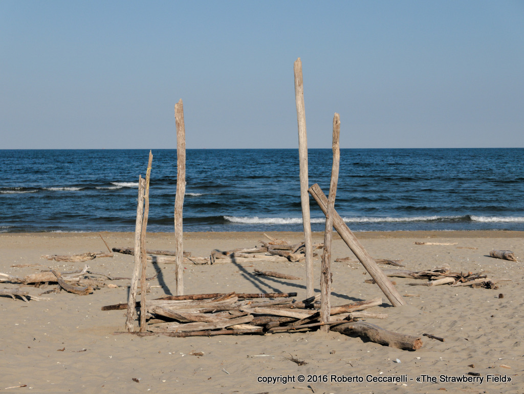 Supporto di tronchi per ripararsi dal sole
