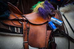 Mardi Gras Saddle Essentials. Color and Empties