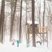Treehouse by trois petits oiseaux
