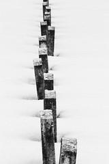 Bluff City Cemetery Snow ©2018 Lauri Novak-2