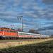 DB Fernverkehr 110 406 mit IC 133, Emden, 07.02.2013
