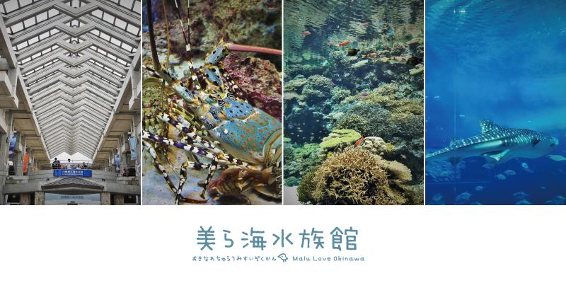 沖繩美麗海水族館文章大圖