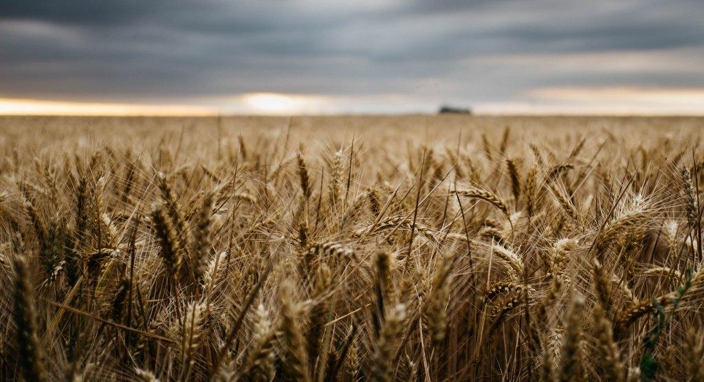 agriculture-du-futur-2018