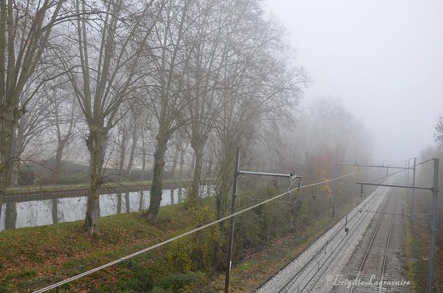 brouillard et solitude