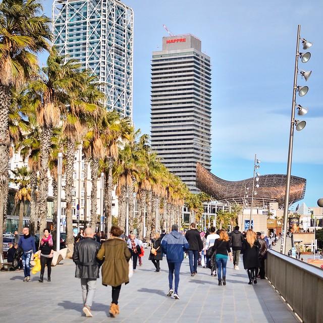 Barcelona tammikuu
