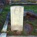 1915 Northamptonshre Yeomanry BC Cockett 21