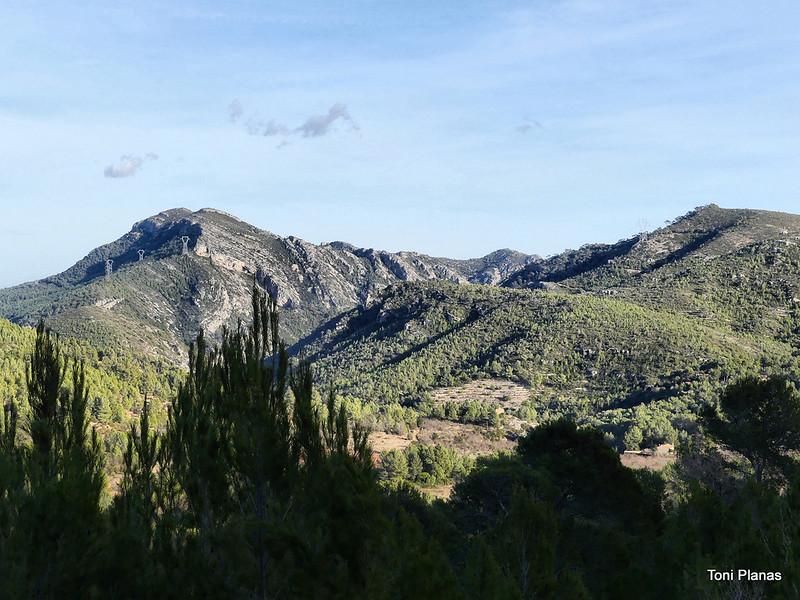 Tomb del Puig de la Cabrafiga
