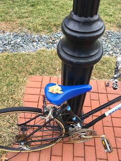 Satire: The Bike Seat Bamboozler strikes Newark